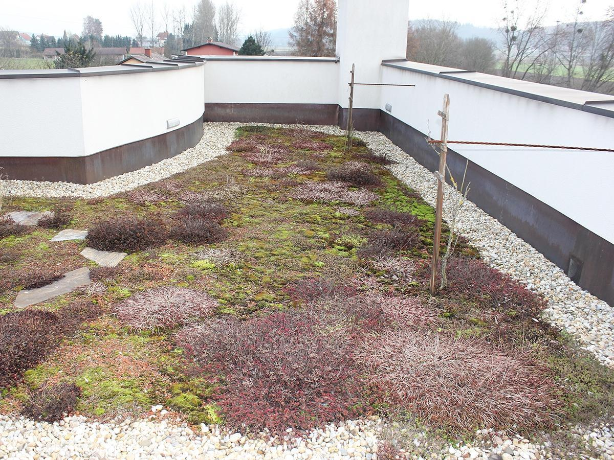 Gründach Dachdecker, Spengler und Bauwerksabdichter Hochegger - Hartberg