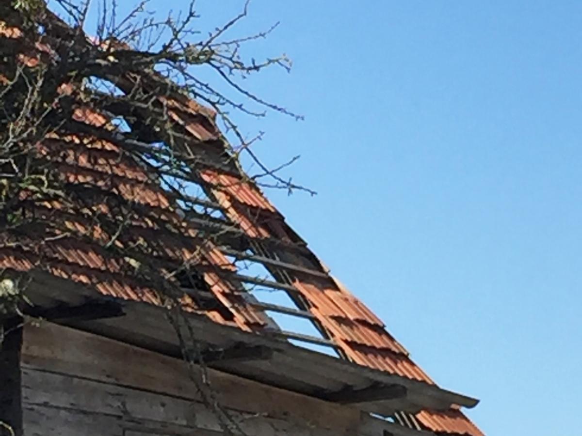 Sturmschadenbehebung Dachdecker, Spengler Salamon & Scherr - Paldau